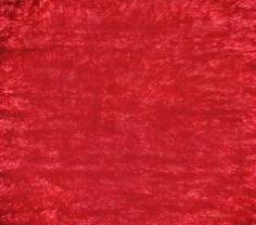 Polo vermelho