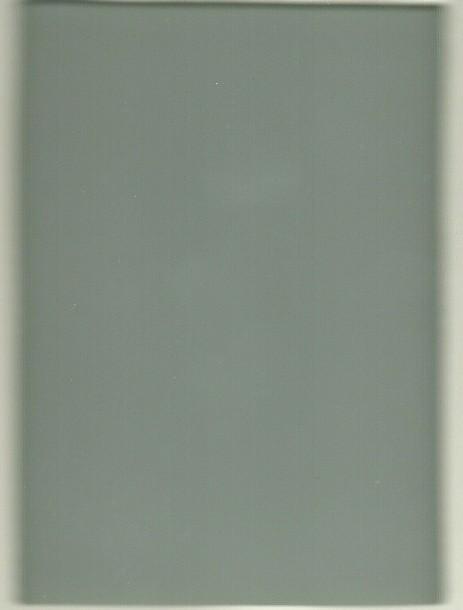 Cinza vidro