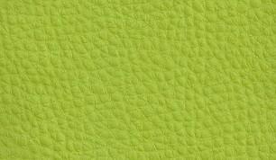 BAV PU Verde